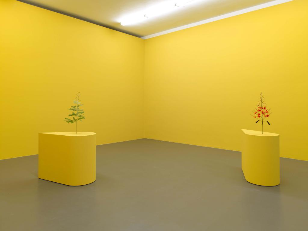 Kapwani Kiwanga, The Marias, 2020, paper flowers, courtesy the artist. Exhibition overview Kapwani Kiwanga, new work, 2020, at formerly known Witte de With Center for Contemporary Art. Photographer: Kristien Daem.